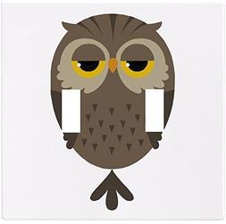 Cartoon Owl Wallplate Decorative Switch Plate Cover