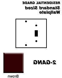 Wallplate 2-Gang 1-Toggle 1-Blank Standard Size Plastic - Br