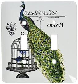 3dRose lsp_178821_2 Paris Peacock On Bird Cage Toggle Switch